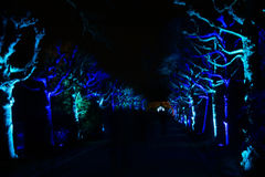 Luzes mágicas no parque de Gruga, Alemanha Fotografia de Stock Royalty Free