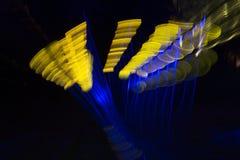Luzes mágicas no parque de Gruga, Alemanha Imagem de Stock