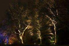 Luzes mágicas no parque de Gruga, Alemanha Fotos de Stock