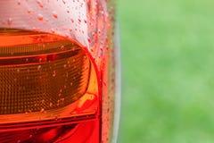Luzes molhadas da cauda do carro moderno contra a grama verde Imagem de Stock Royalty Free