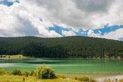 Luzes no lago artificial em Romênia perto da floresta do pinho Imagens de Stock