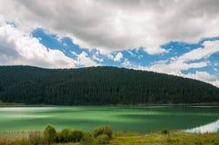 Luzes no lago artificial em Romênia perto da floresta do pinho Fotos de Stock Royalty Free