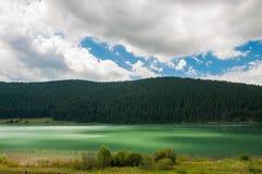 Luzes no lago artificial em Romênia perto da floresta do pinho Foto de Stock
