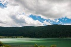 Luzes no lago artificial em Romênia perto da floresta do pinho Imagem de Stock