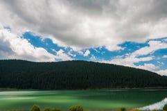 Luzes no lago artificial em Romênia perto da floresta do pinho Fotografia de Stock