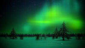 Luzes polares no laço da floresta ilustração stock