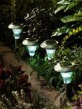 Luzes solares do jardim Foto de Stock