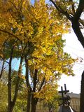 Lviv architektura jest piękna! obraz royalty free