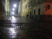 Lviv bij nacht Stock Foto's