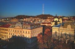Lviv bird& x27; s oko fotografia stock