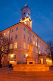 Lviv City Hall Royalty Free Stock Images