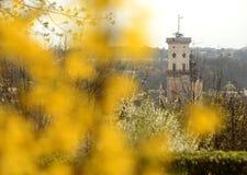 Lviv City Hall tower. Spring in Lviv, Ukraine.  royalty free stock photos