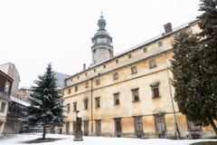 Lviv, de Oekraïne - Januari 21, 2011: Achter de de bouw stijgingen de koepel van de kerk van Bernardine ` s Royalty-vrije Stock Foto's