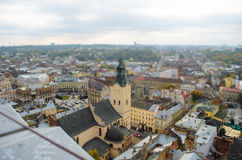 Lviv from a height, panoramic photo, tilt-shift. Royalty Free Stock Image