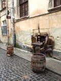Lviv monument Royalty Free Stock Image