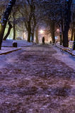 Lviv night park Stock Images