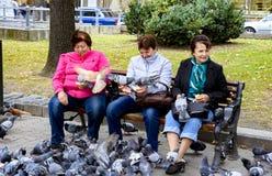 Lviv, Ucrânia - 29 de setembro de 2016: Mulheres que sentam-se em um banco que alimenta um rebanho dos pombos imagens de stock