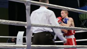 LVIV, UCRÂNIA - 14 de novembro de 2017 competiam de encaixotamento Luta dos pugilistas de Midweight no anel de encaixotamento video estoque
