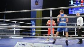 LVIV, UCRÂNIA - 14 de novembro de 2017 competiam de encaixotamento Os pugilistas de Midweight lutam no anel de encaixotamento no  video estoque