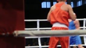 LVIV, UCRANIA - 14 de noviembre de 2017 torneo de encajonamiento Lucha de los boxeadores de Midweight en ring de boxeo en el torn almacen de metraje de vídeo