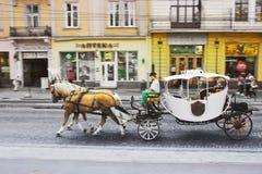 Lviv Ukraina - Augusti 25, 2018: Hästvagn i den forntida staden av Lviv arkivbild