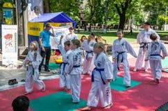 Lviv Ukraina - Juli 2015: Yarych gataFest 2015 Demonstrationsövning utomhus i parkerabarnen och deras läraretaekwon Arkivbild