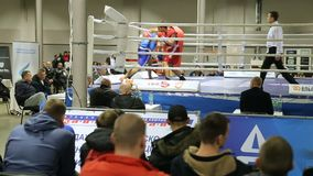 LVIV UKRAINA - November 14, 2017 boxas turnering Boxarekamp i boxningsring på turnering stock video