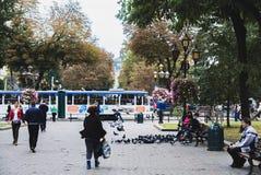 Lviv Ukraina, Wrzesień, - 29, 2016: Kobiety karmy gołębie na miasto ulicie Fotografia Stock