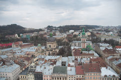 lviv ukraine Arkivfoton