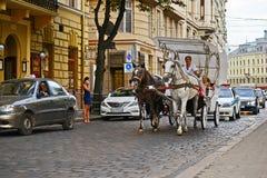 Lviv, Ukraine - August 5, 2015: Lviv cityscape. Team of horses racing on the main street of Lviv Royalty Free Stock Image