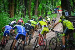 Lviv, Ukraine - August 17, 2016: 4th round of amateur xc cup of Ukraine 2016. Lviv, Ukraine - August 17, 2016: Group of MTB cyclists competing in the forest Stock Photo