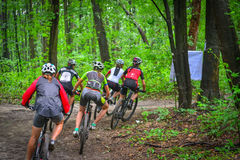 Lviv, Ukraine - August 17, 2016: 4th round of amateur xc cup of Ukraine 2016. Lviv, Ukraine - August 17, 2016: Group of young women MTB cyclists competing in Royalty Free Stock Image