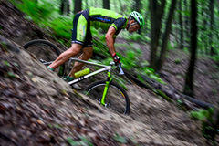 Lviv, Ukraine - August 17, 2016: 4th round of amateur xc cup of Ukraine 2016. Lviv, Ukraine - August 17, 2016: MTB cyclist E. Zakora competing in the forest Royalty Free Stock Images