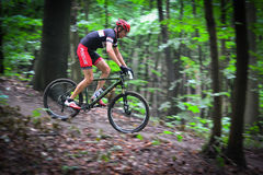 Lviv, Ukraine - August 17, 2016: 4th round of amateur xc cup of Ukraine 2016. Lviv, Ukraine - August 17, 2016: MTB cyclist A. Hryn competing in the forest near Royalty Free Stock Photography
