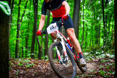 Lviv, Ukraine - August 17, 2016: 4th round of amateur xc cup of Ukraine 2016. Lviv, Ukraine - August 17, 2016: MTB cyclist I. Bozhkov competing in the forest Royalty Free Stock Photo