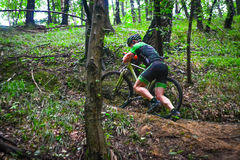 Lviv, Ukraine - August 17, 2016: 4th round of amateur xc cup of Ukraine 2016. Lviv, Ukraine - August 17, 2016: MTB cyclist M. Shmaniov competing in the forest Stock Images