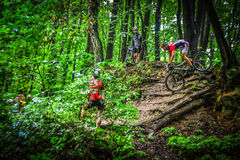 Lviv, Ukraine - August 17, 2016: 4th round of amateur xc cup of Ukraine 2016. Lviv, Ukraine - August 17, 2016: MTB cyclist O. Kudryk competing in the forest Royalty Free Stock Photography