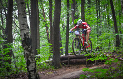 Lviv, Ukraine - August 17, 2016: 4th round of amateur xc cup of Ukraine 2016. Lviv, Ukraine - August 17, 2016: MTB cyclist O. Todorchak competing in the forest Stock Photography