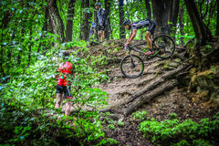 Lviv, Ukraine - August 17, 2016: 4th round of amateur xc cup of Ukraine 2016. Lviv, Ukraine - August 17, 2016: MTB cyclist P. Mazur competing in the forest near Stock Image