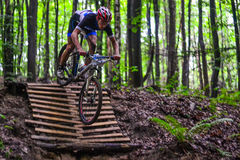 Lviv, Ukraine - August 17, 2016: 4th round of amateur xc cup of Ukraine 2016. Lviv, Ukraine - August 17, 2016: MTB cyclist A. Pustovit competing in the forest Royalty Free Stock Photography