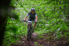 Lviv, Ukraine - August 17, 2016: 4th round of amateur xc cup of Ukraine 2016. Lviv, Ukraine - August 17, 2016: MTB cyclist V. Skubenko competing in the forest Stock Image