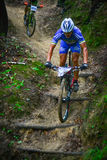 Lviv, Ukraine - August 17, 2016: 4th round of amateur xc cup of Ukraine 2016. Lviv, Ukraine - August 17, 2016: Undefined MTB cyclist competing in the forest Stock Photo