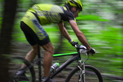Lviv, Ukraine - August 17, 2016: 4th round of amateur xc cup of Ukraine 2016. Lviv, Ukraine - August 17, 2016: Undefined MTB cyclist competing in the forest Stock Photos