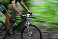 Lviv, Ukraine - August 17, 2016: 4th round of amateur xc cup of Ukraine 2016. Lviv, Ukraine - August 17, 2016: Undefined MTB cyclist competing in the forest Stock Image