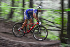 Lviv, Ukraine - August 17, 2016: 4th round of amateur xc cup of Ukraine 2016. Lviv, Ukraine - August 17, 2016: Undefined MTB cyclist competing in the forest Royalty Free Stock Images