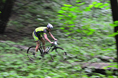 Lviv, Ukraine - August 17, 2016: 4th round of amateur xc cup of Ukraine 2016. Lviv, Ukraine - August 17, 2016: Undefined MTB cyclist competing in the forest Royalty Free Stock Photos