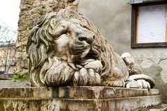 LVIV, UKRAINE - December 24,2017:. Marble sculpture of lion with coat of arms. Symbol emblem of the city in front powder tower in Lviv Lvov Ukraine stock photo