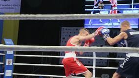LVIV, UKRAINE - November 14, 2017 Boxing tournament. Lightweight boxers fight in boxing ring on tournament. Steadycam shot stock video footage