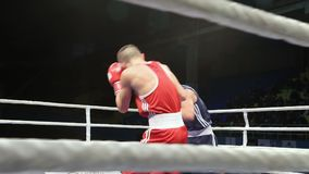 LVIV, UKRAINE - November 14, 2017 Boxing tournament. Lightweight boxers fight in boxing ring on tournament. Steadycam shot stock video