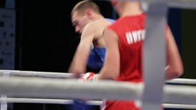 LVIV, UKRAINE - November 14, 2017 Boxing tournament. Lightweight boxers fight in boxing ring on tournament. Steadycam shot stock footage